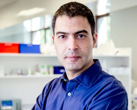Fabrice Giacomelli Nucleis