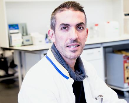 Juan manuel Ruiz Y camacho Nucleis